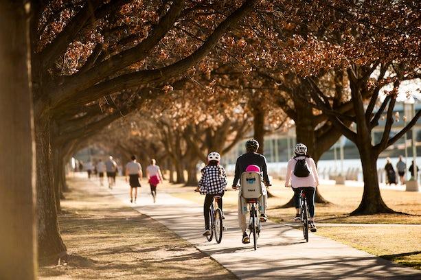 Biking in Canberra