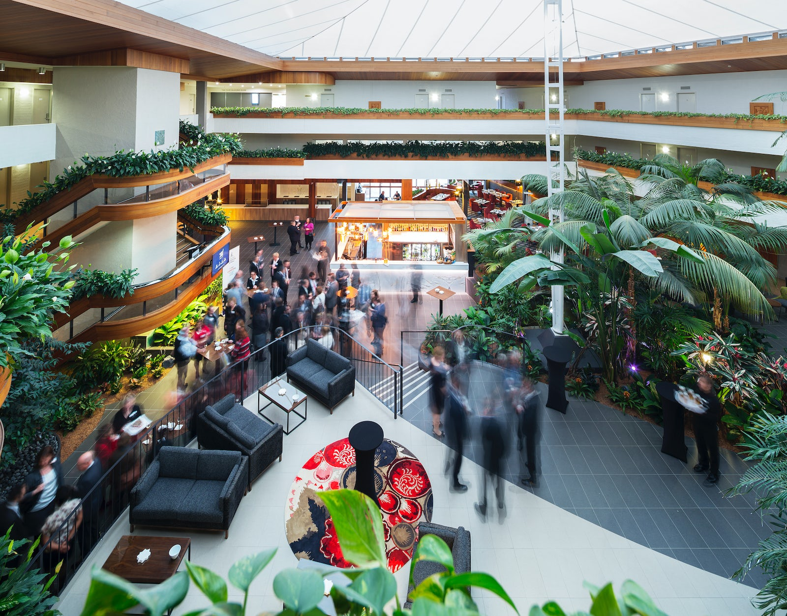A picture of the Atrium at Pavilion on Northbourne in Dickson