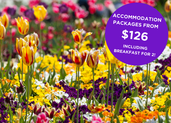 Floriade Canberra Accommodation