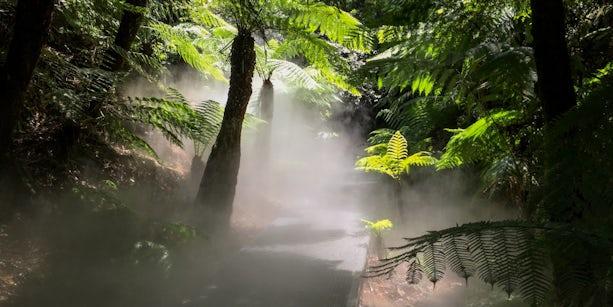 Australia National Botanical Gardens