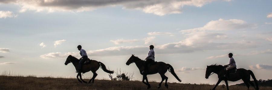 Explore the bush around Canberra on horseback